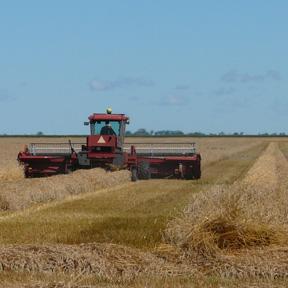 combine going through field